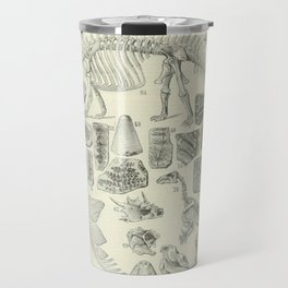 Fossil Chart Travel Mug