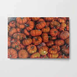 Orange Gourds Metal Print