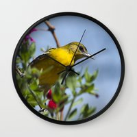 baltimore Wall Clocks featuring Baltimore Oriole by Christina Rollo