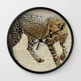 Baby cheetah learning to stalk Wall Clock