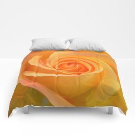 Warm Yellow Rose Comforters