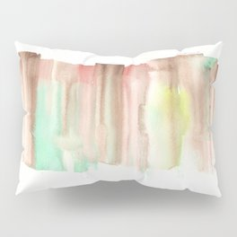 [161228] 24. Abstract Watercolour Color Study|Watercolor Brush Stroke Pillow Sham