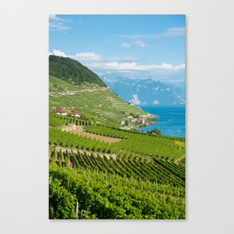 Vineyards of the UNESCO World Heritage Site of Lavaux Canvas Print