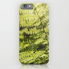 Sun leaf iPhone 6s Slim Case