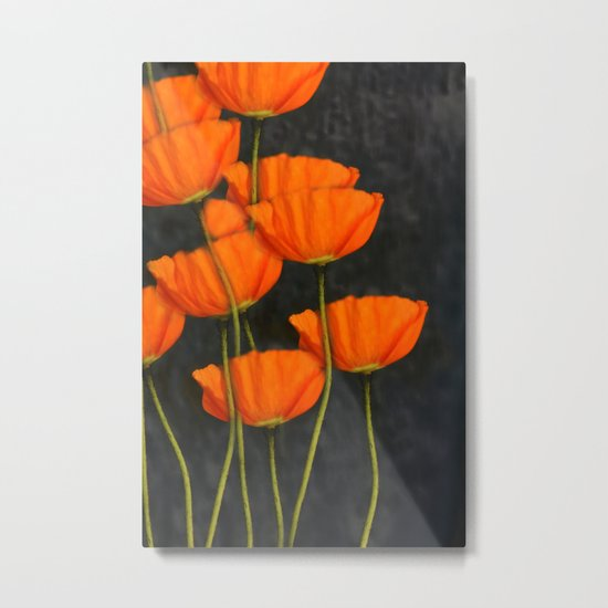 Poppies(orange). Metal Print