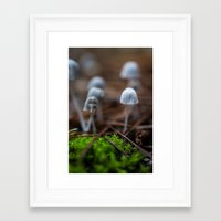 mushrooms Framed Art Prints featuring Mushrooms by Michelle McConnell