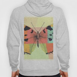 Aesthetic Abstract Pattern Butterfly Hoody
