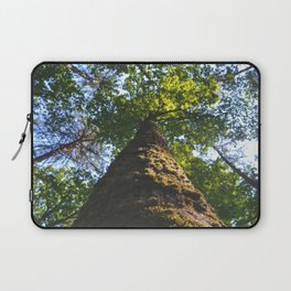 forest views Laptop Sleeve