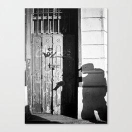 Photographer's Shadow Canvas Print