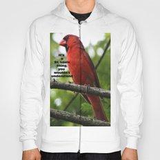 Go Birds Hoody