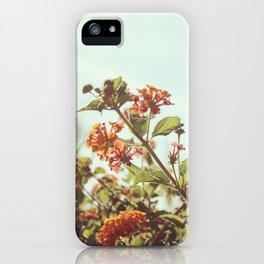 Orange Sunshine iPhone Case