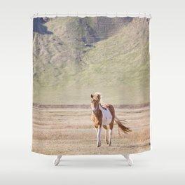Icelandic Paint Horse Photograph Shower Curtain