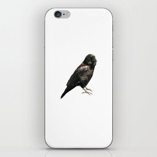 animal#01 iPhone & iPod Skin