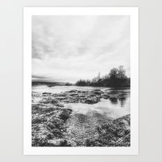 | the whisper of the river - reveals secrets | Art Print