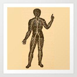 Circulatory system. Art Print