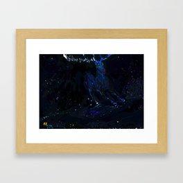 Night White Tail Framed Art Print