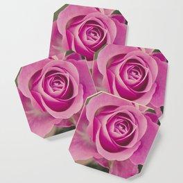 Close up of a rose Coaster