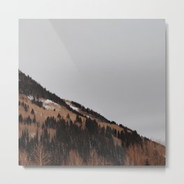 Winter Hillside Metal Print