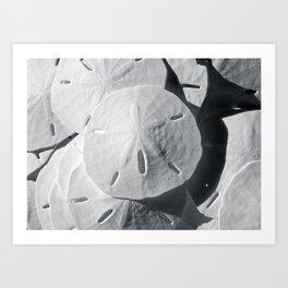 Sea Cookies Art Print