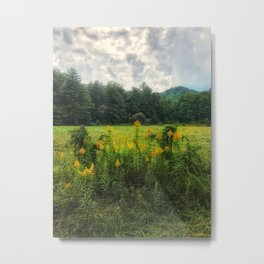 Flowers in a field Metal Print