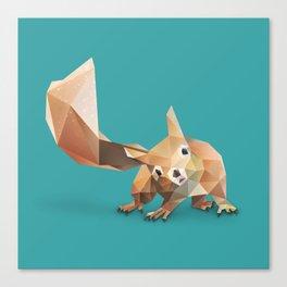 Squirrel. Canvas Print