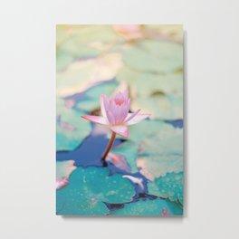 Cute Pink Blooming Lotus Metal Print
