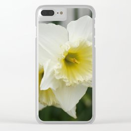 White and yellow daffodils, early spring flowers Clear iPhone Case