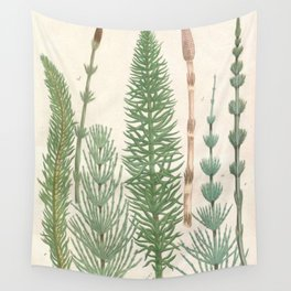 Botanical Horsetail Plants Wall Tapestry