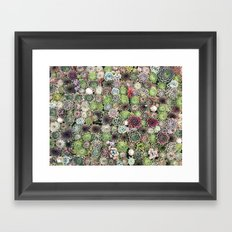 succulent party  Framed Art Print
