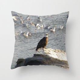 Eagle on Ice Throw Pillow