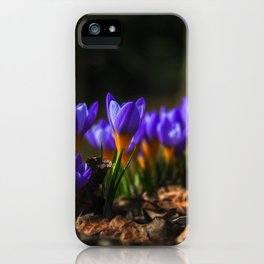 Nature : Wildlife iPhone Case