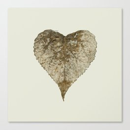 heart nature Canvas Print