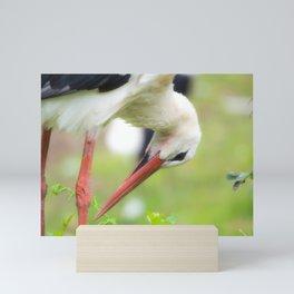 Portrait of a stork in summer Mini Art Print
