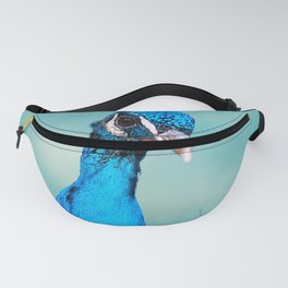 Peacock blue 46 Fanny Pack
