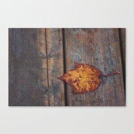 vintage leaf. Canvas Print