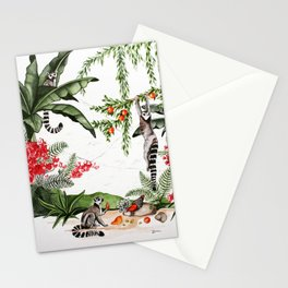 Ring-tailed lemurs of Madagascar .1 Stationery Cards