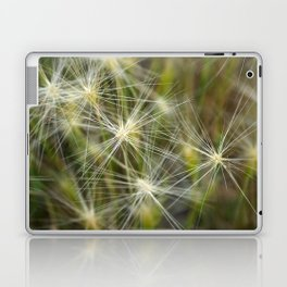 Late summer cheatgrass Laptop & iPad Skin