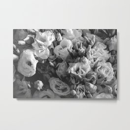 Black and White Lisianthus Metal Print