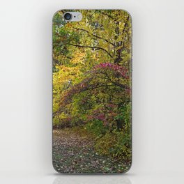 Go Your Own Way iPhone Skin
