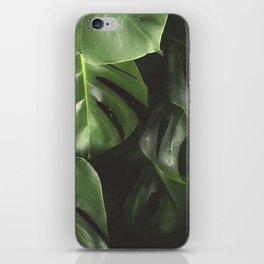 Monstera Leaves iPhone Skin