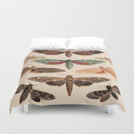 Vintage Natural History Moths Duvet Cover