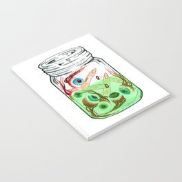 Pickled Enemies Notebook