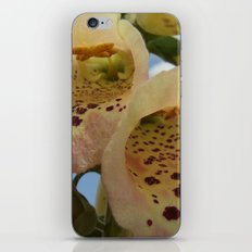 Foxglove Flowers iPhone & iPod Skin
