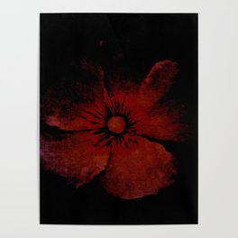 abstract red flower Poster