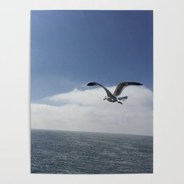 Flying Free Poster