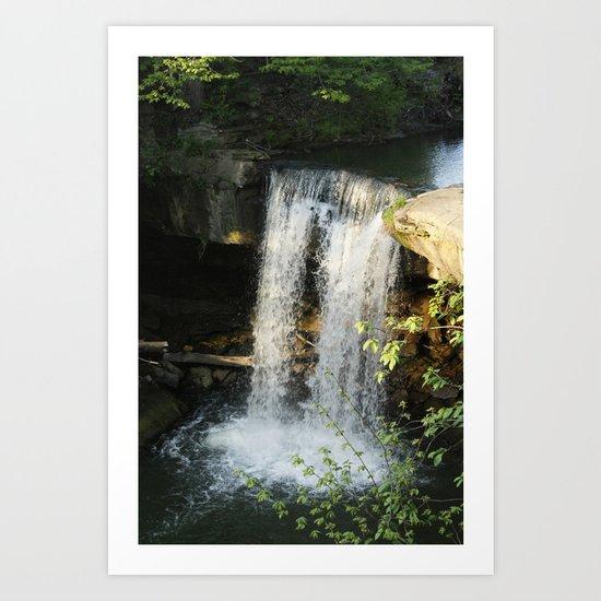 The Falls In Cascade Park Art Print