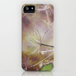 Spiderweb :: Come Hither iPhone Case