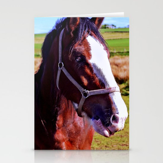 Scottish Clydesdale Stationery Cards