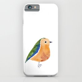 Has Feathers iPhone Case