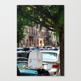 Science Project Canvas Print